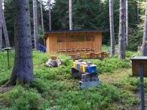 Bienenhaus in der Belegstelle